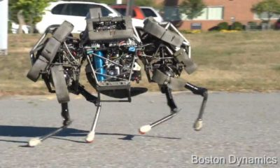 boston_dynamics_wildcat