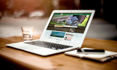 L-agence-web-un-partenaire-ideal-pour-les-TPE-et-PME.jpg